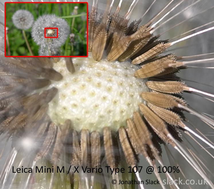 Leica Mini M sample Images