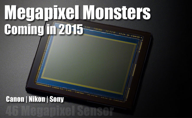 Megapixel-moster-2015