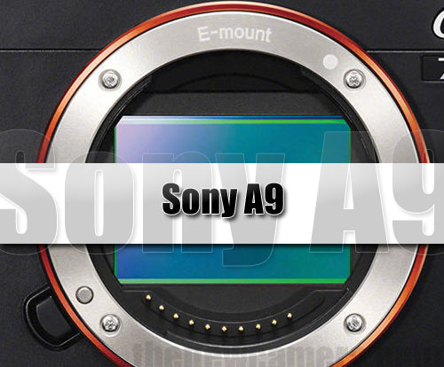 Sony-A9-Coming-Soon