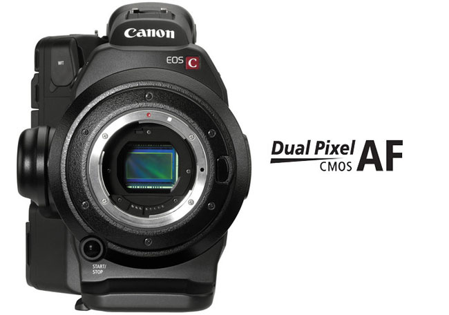 Canon c300 dual pixel af im for New camera 2015
