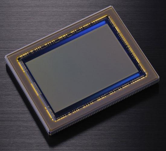 Nikon-D800-sensor-image