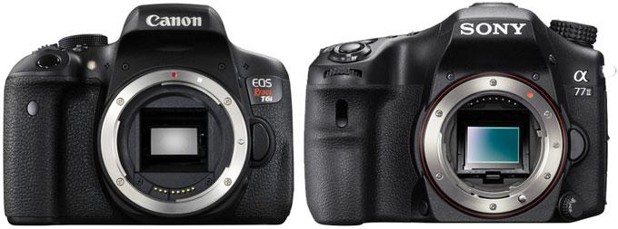 Canon 750D vs. Sony A77II 1
