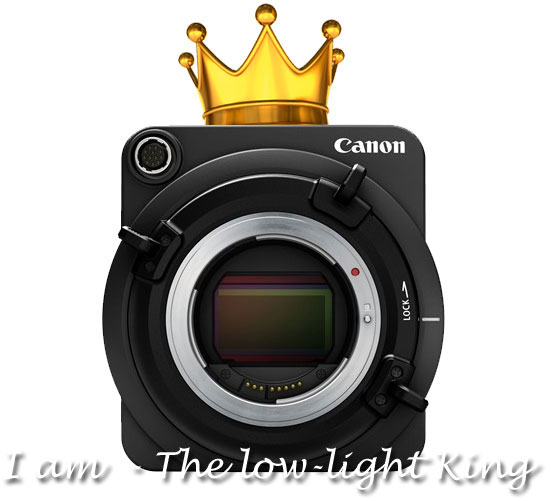 Canon-low-light-king