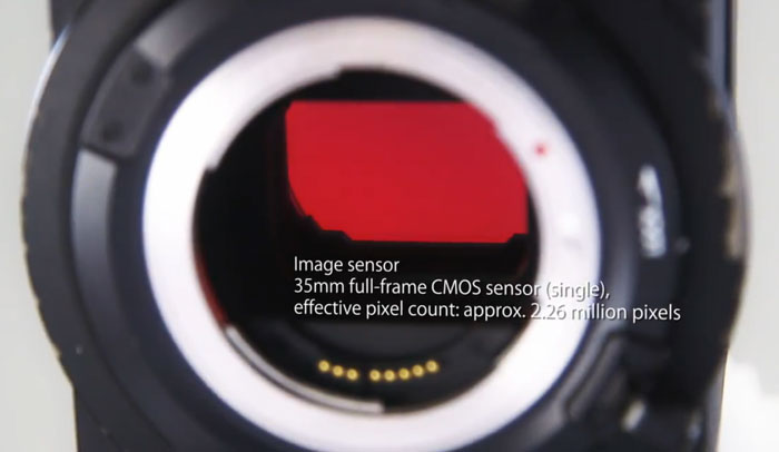 Canon-sensor-image