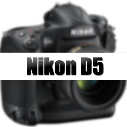 Nikon-D5-coming