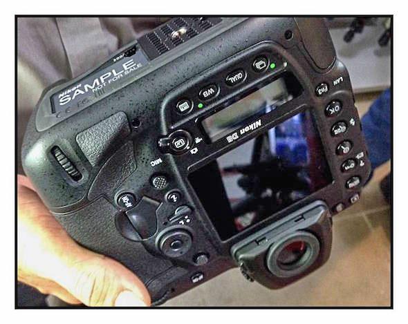 Nikon-D5-Sample-img