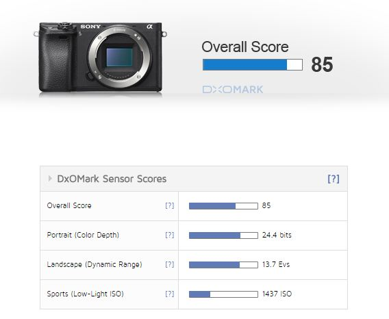 Sony A6300 DXo score