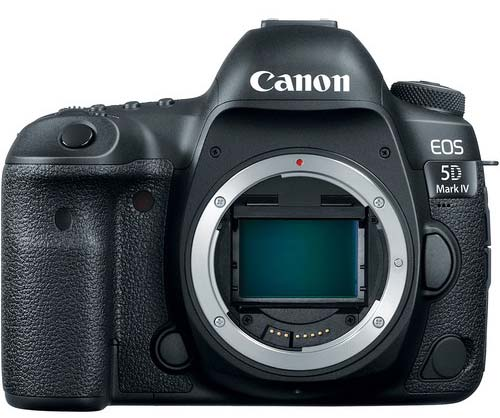 Best Lenses for Canon 5D Mark IV