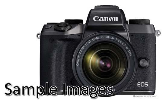 Canon EOS M5 Sample Image