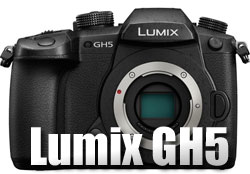 Lumix GH5 image