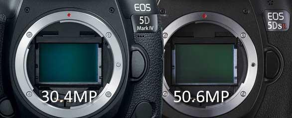 Canon 5D4 vs 5DS