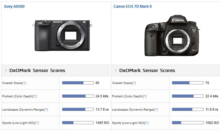 Sony A500 vs Canon 7D Mark II