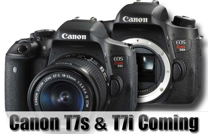 Canon T7s and T7i coming image
