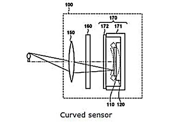Curve sensor
