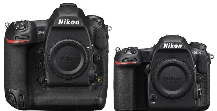 Nikon D5 vs Nikon D500 image