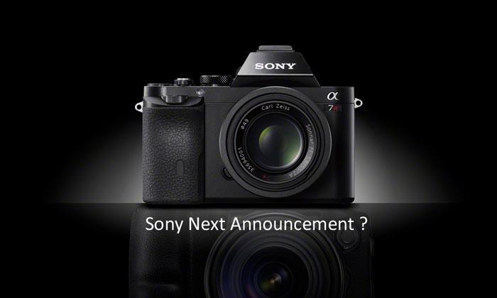 Sony next ann