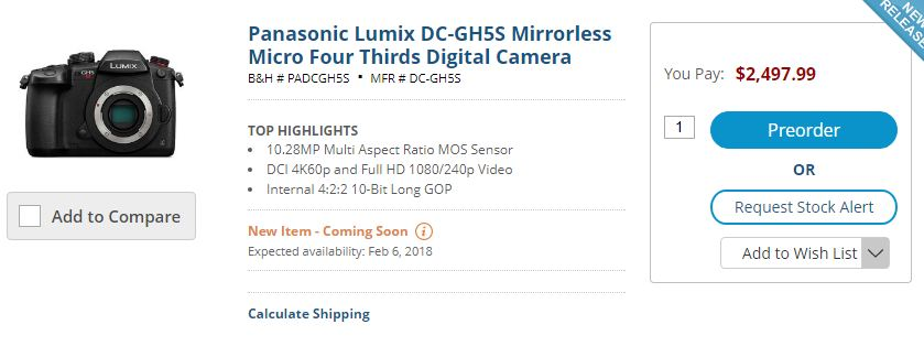 Panasonic GH5s