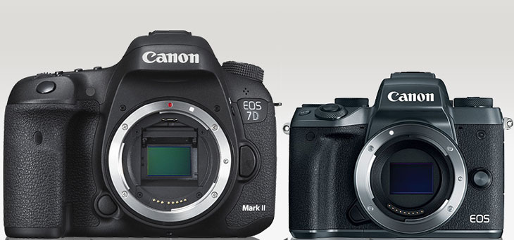 Canon 7D Mark II vs Canon EOS M50 camera