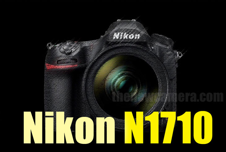 Nikon N1710