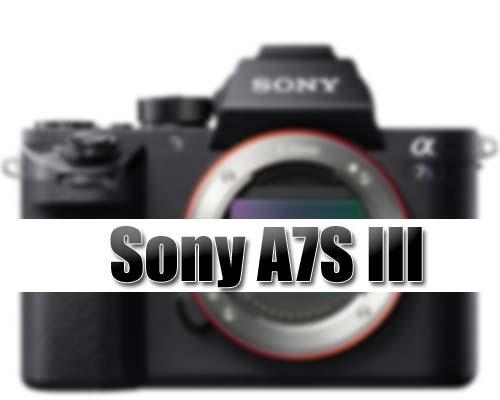 Sony A7S III camera image